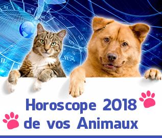 Prédictions 2018   Yanis Voyance Astrologue 6c2b720960a3